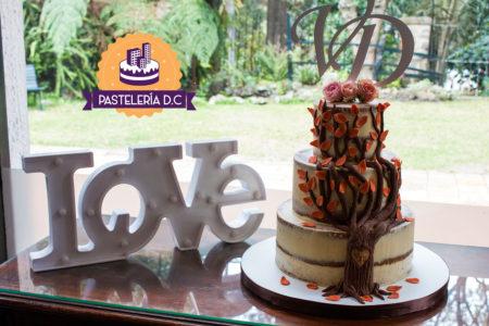 Ponqué Pastel Torta semi desnuda Matrimonio o Boda Semi Naked Cake en Bogotá árbol